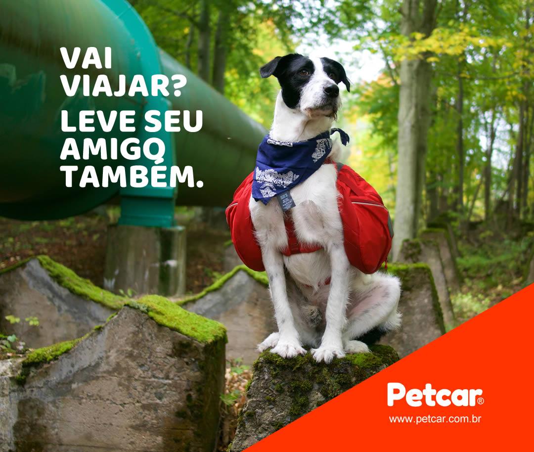 Flyer para Facebook e Instagram para Petcar