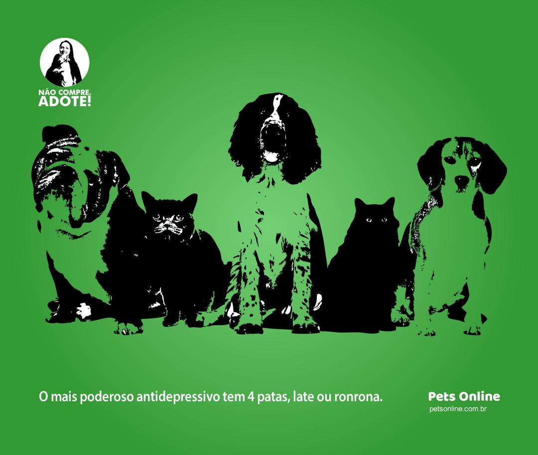Flyer digital para o site Pets Online