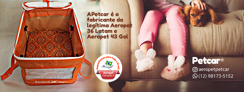 Capa para fanpage Facebook para Petcar Carrinhos
